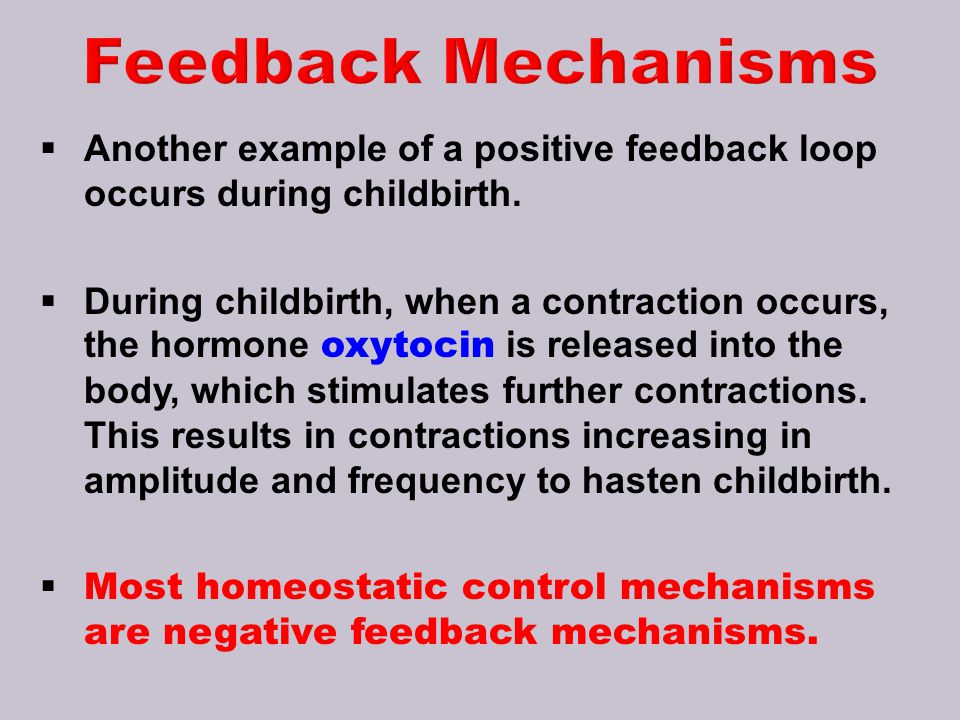 Feedback Mechanisms Another example of a positive feedback loop occurs during childbirth.