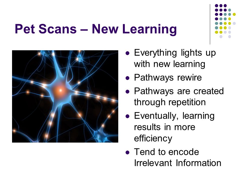 Pet Scans – New Learning