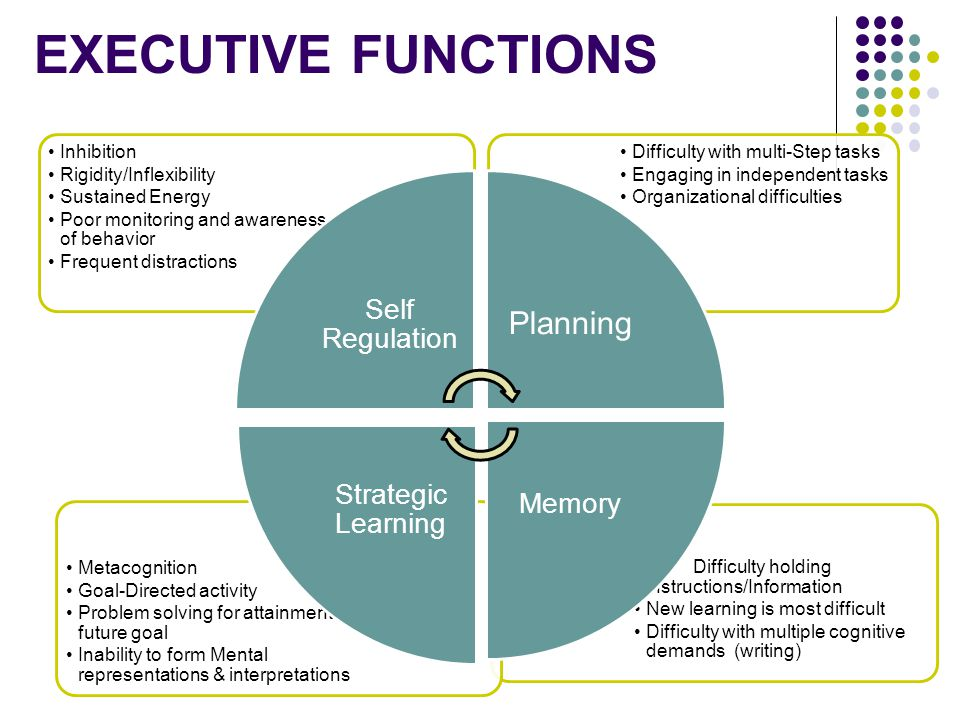 Executive Functions Planning Inhibition Rigidity/Inflexibility