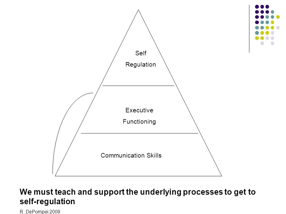 Self Regulation. Executive. Functioning. Communication Skills. We must teach and support the underlying processes to get to self-regulation.
