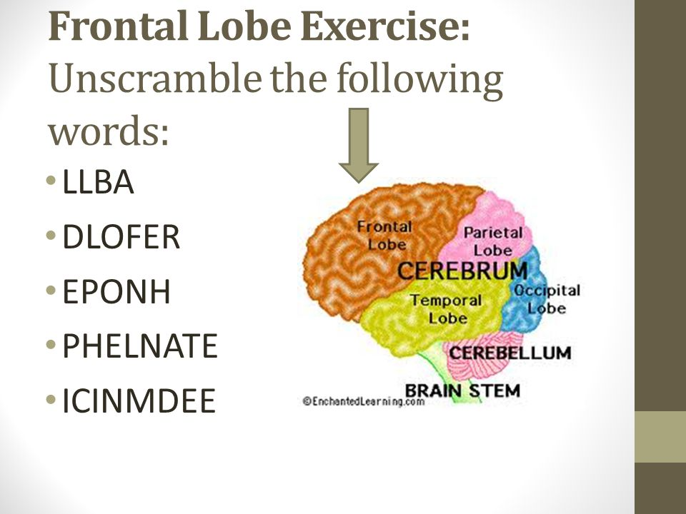 Frontal Lobe Exercise: Unscramble the following words:
