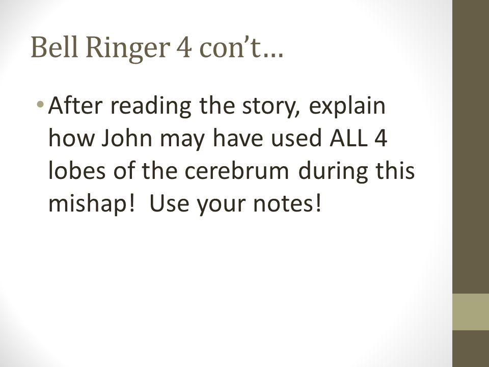 Bell Ringer 4 con't… After reading the story, explain how John may have used ALL 4 lobes of the cerebrum during this mishap.