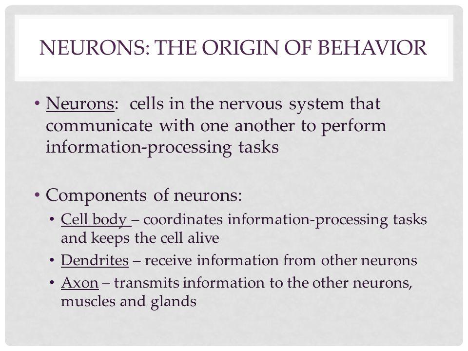 Neurons: The Origin of Behavior