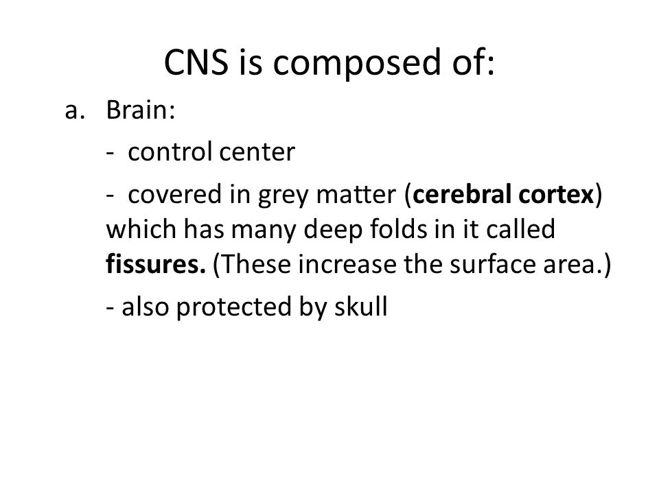 CNS is composed of: