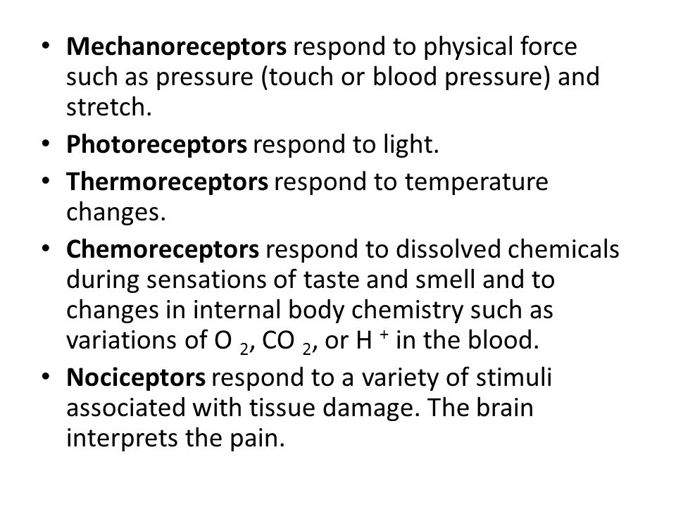 Mechanoreceptors respond to physical force such as pressure (touch or blood pressure) and stretch.
