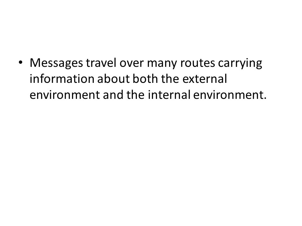 Messages travel over many routes carrying information about both the external environment and the internal environment.