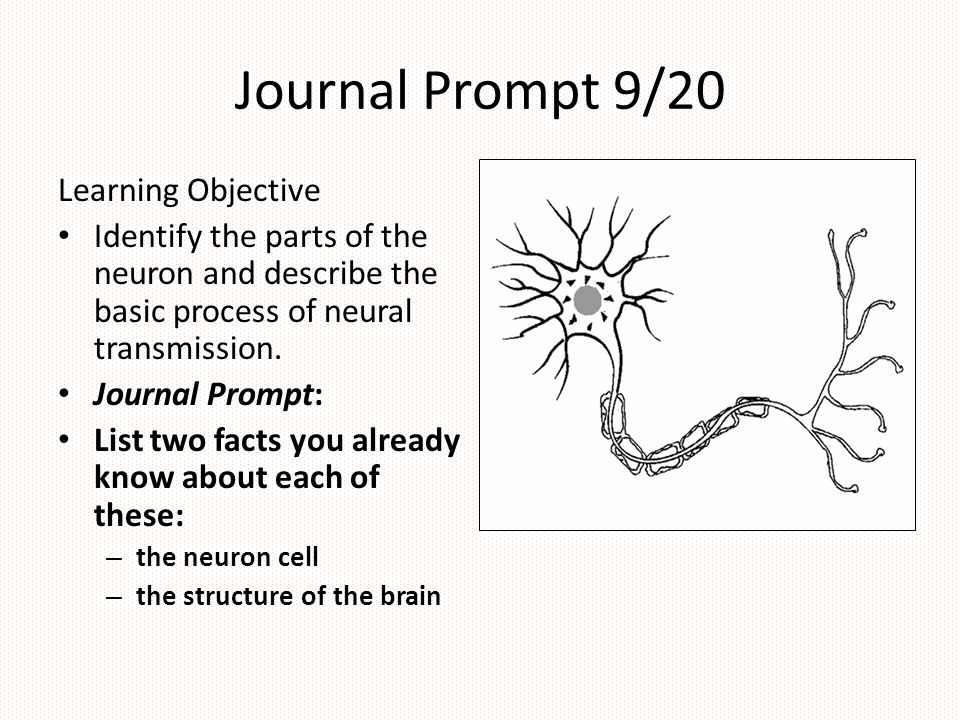 Journal Prompt 9/20 Learning Objective