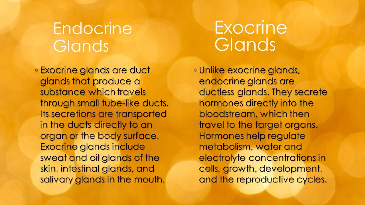 Exocrine Glands Endocrine Glands