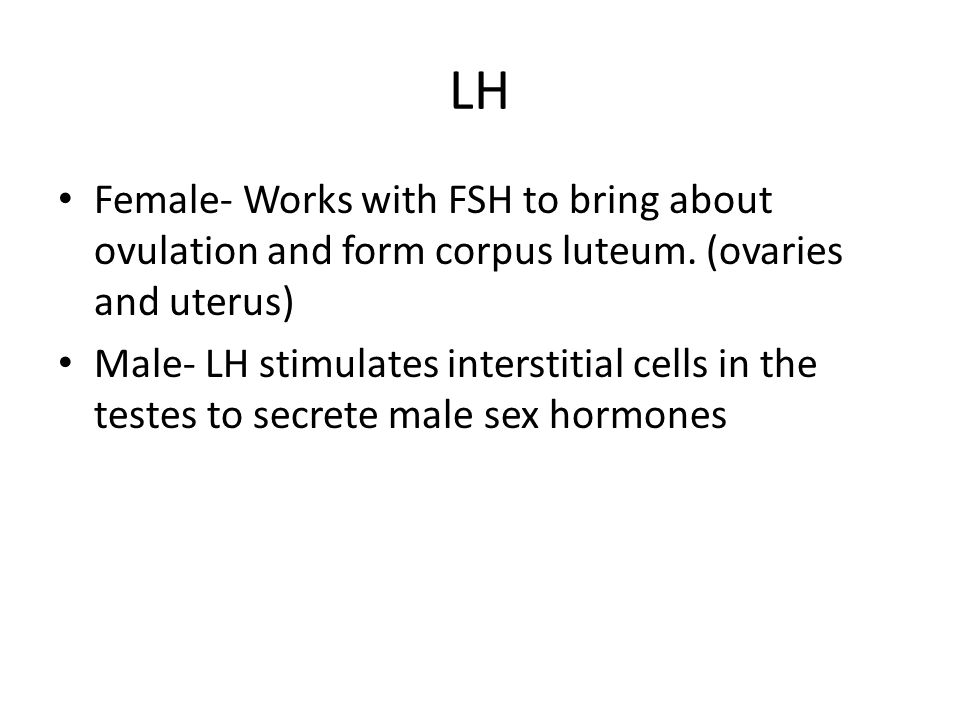 LH Female- Works with FSH to bring about ovulation and form corpus luteum. (ovaries and uterus)