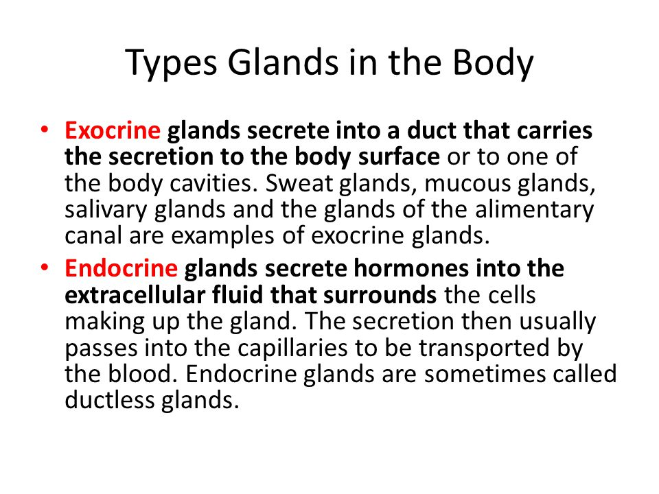 Types Glands in the Body