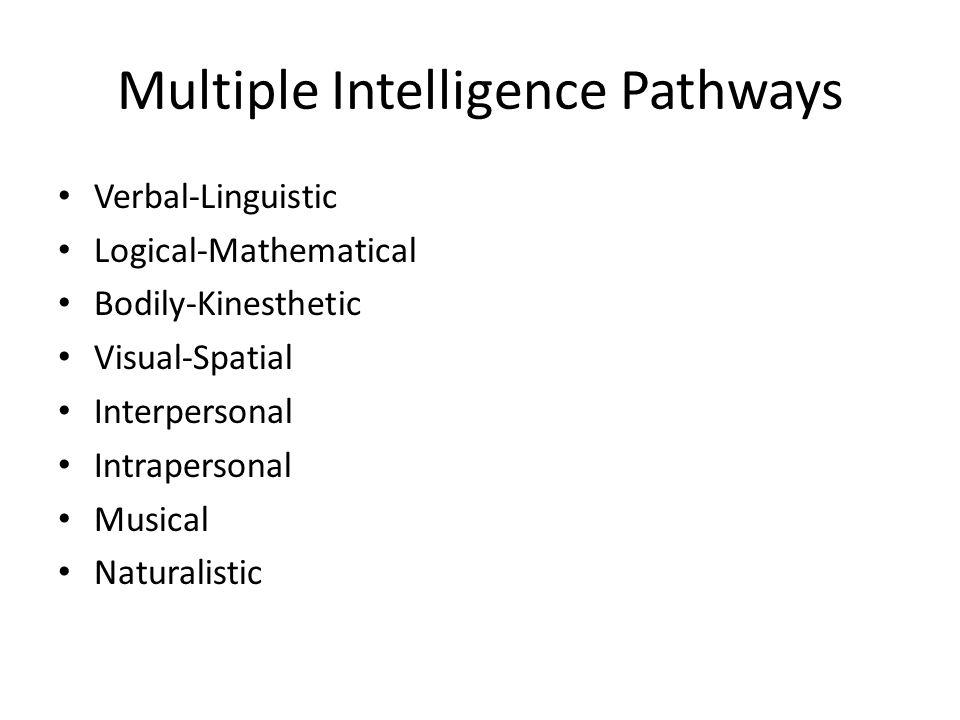 Multiple Intelligence Pathways
