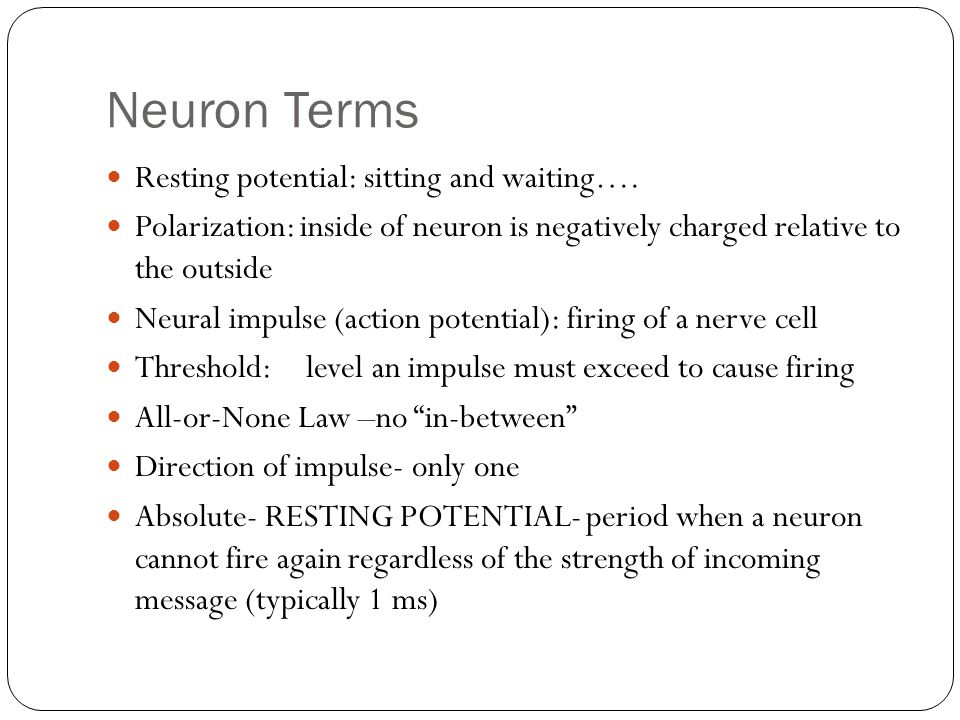 Neuron Terms Resting potential: sitting and waiting….