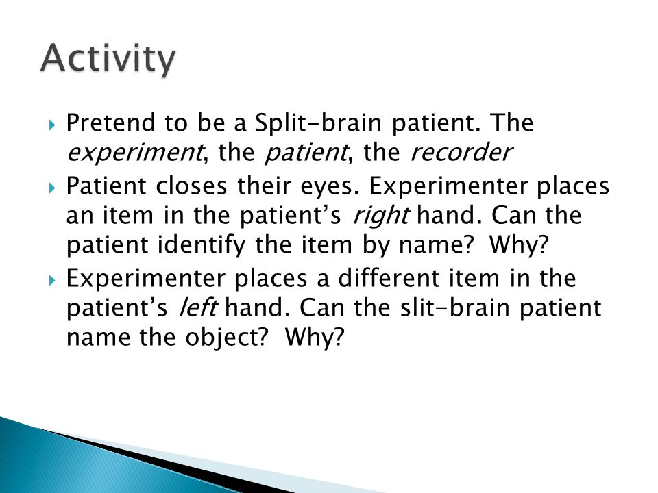 Activity Pretend to be a Split-brain patient. The experiment, the patient, the recorder.