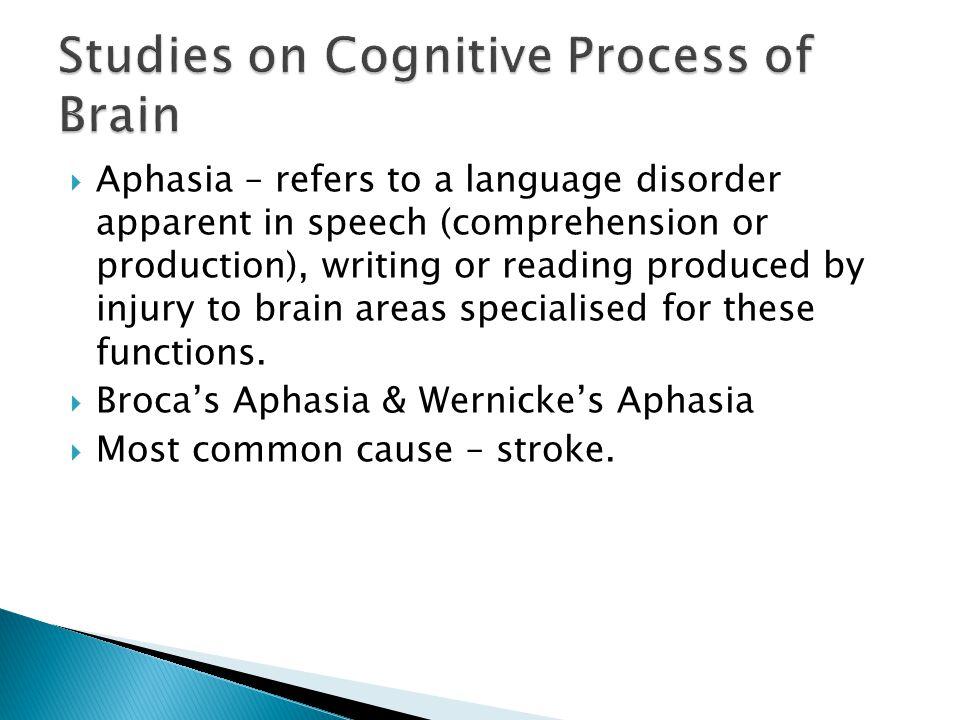 Studies on Cognitive Process of Brain
