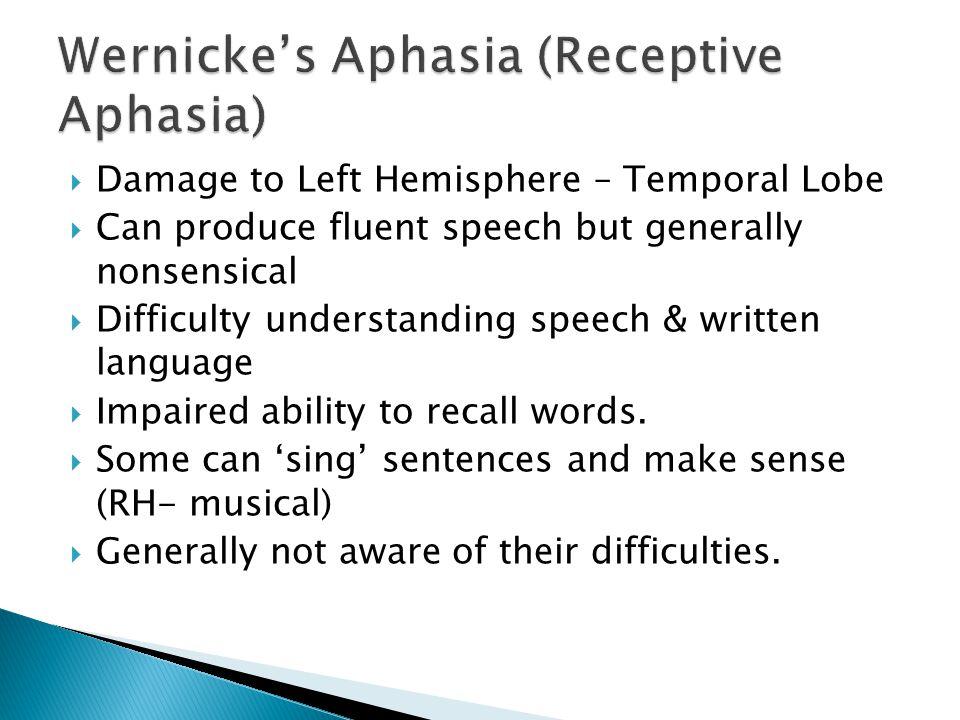 Wernicke's Aphasia (Receptive Aphasia)
