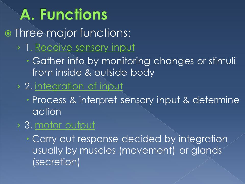 Functions Three major functions: 1. Receive sensory input