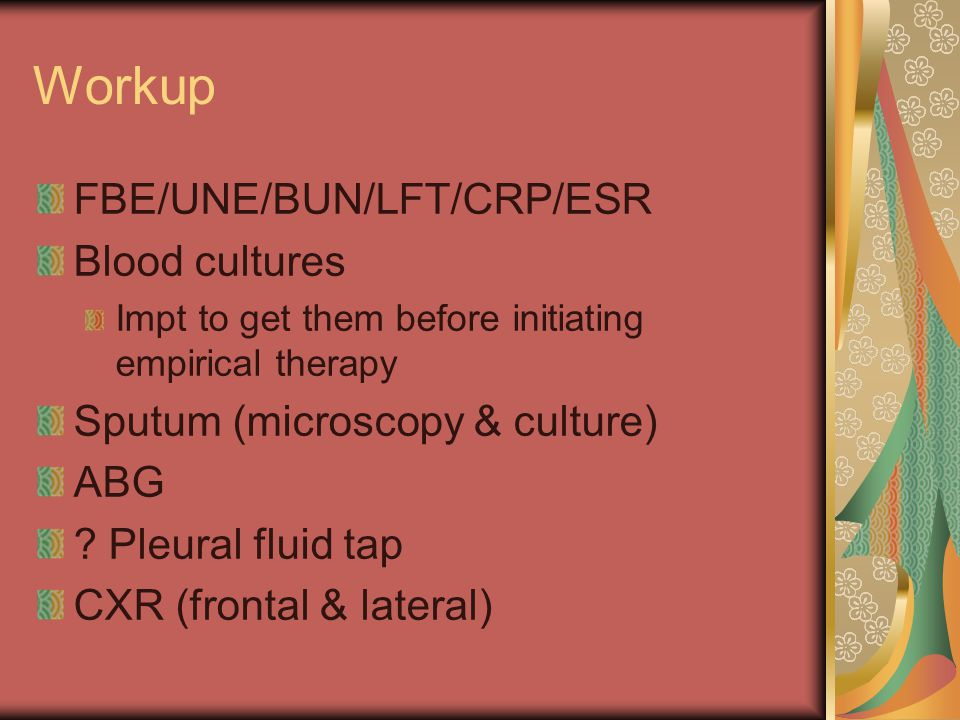 Workup FBE/UNE/BUN/LFT/CRP/ESR Blood cultures