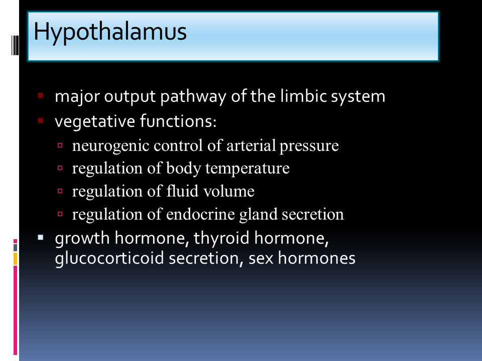 Hypothalamus major output pathway of the limbic system