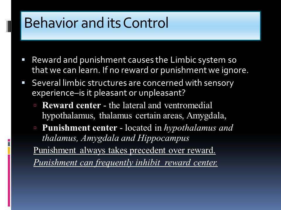Behavior and its Control