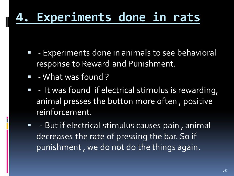 4. Experiments done in rats