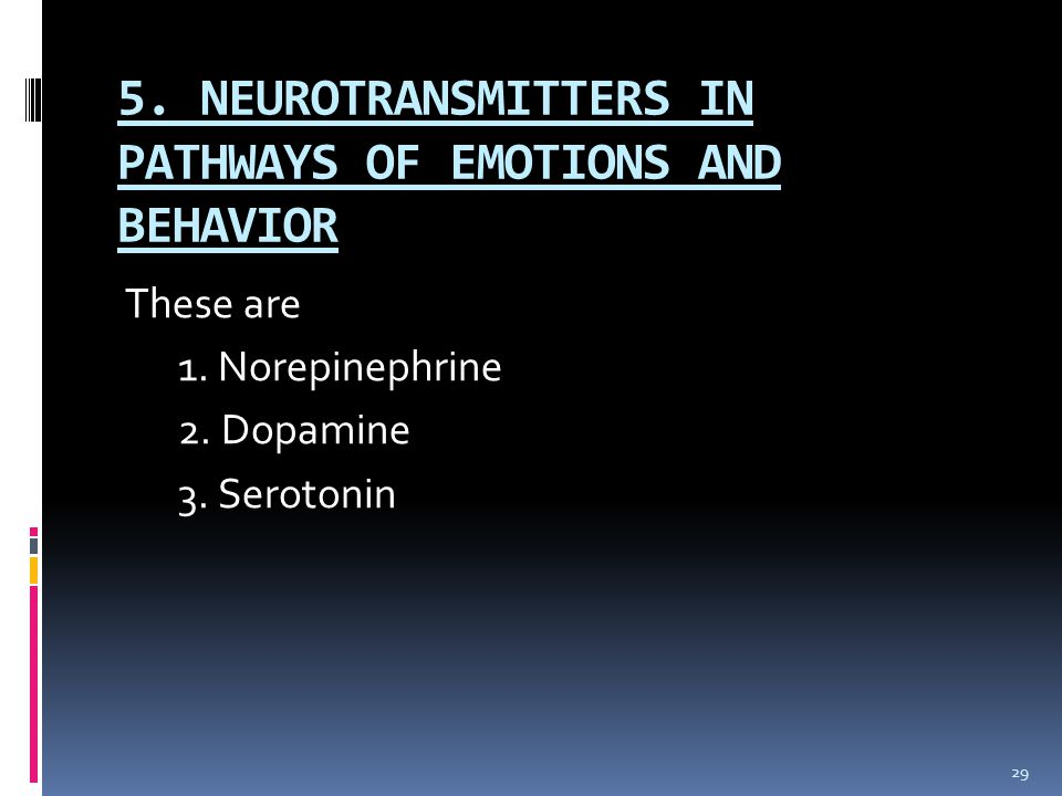 5. NEUROTRANSMITTERS IN PATHWAYS OF EMOTIONS AND BEHAVIOR