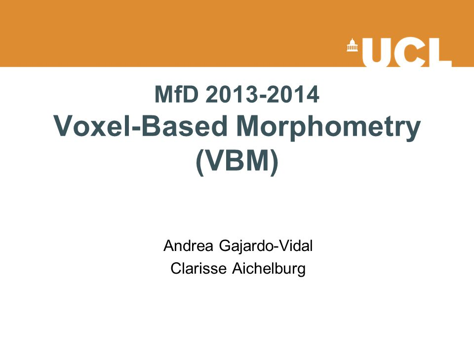 MfD 2013-2014 Voxel-Based Morphometry (VBM)