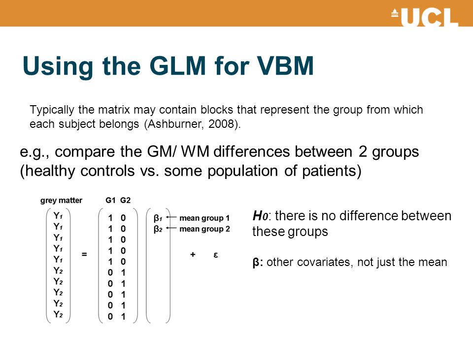 Using the GLM for VBM Typically the matrix may contain blocks that represent the group from which each subject belongs (Ashburner, 2008).