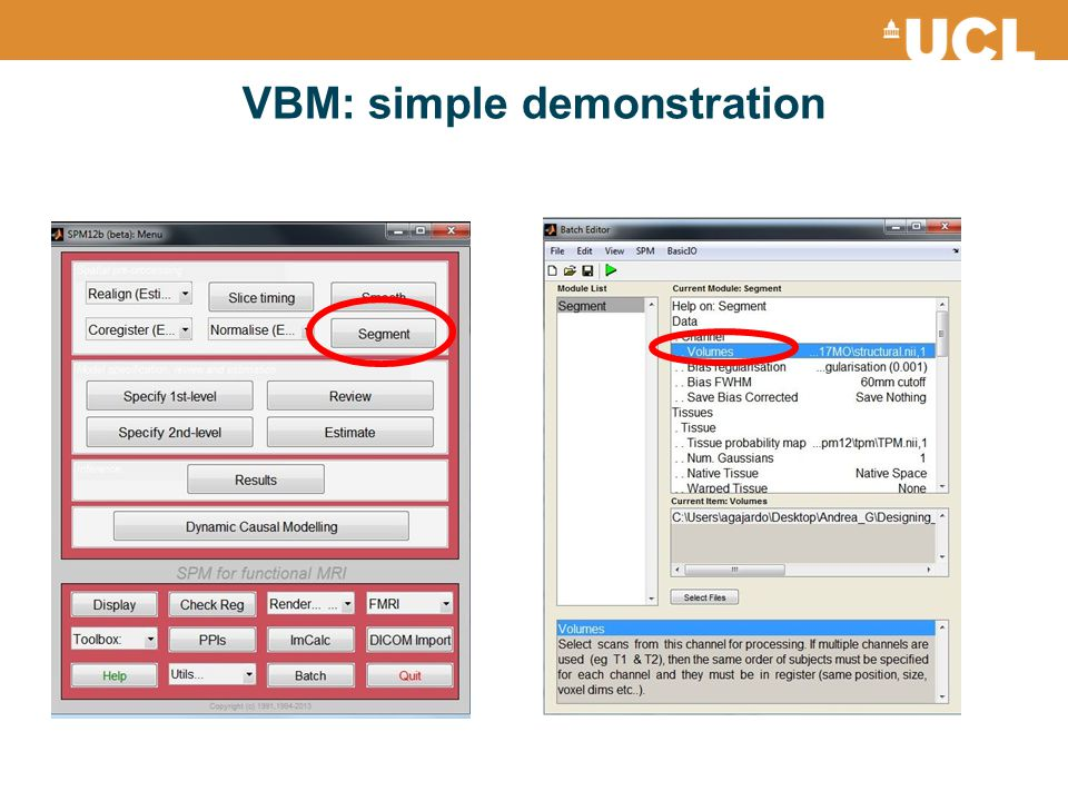 VBM: simple demonstration