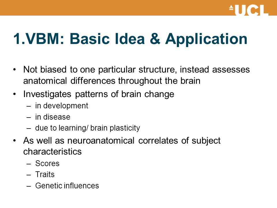 1.VBM: Basic Idea & Application
