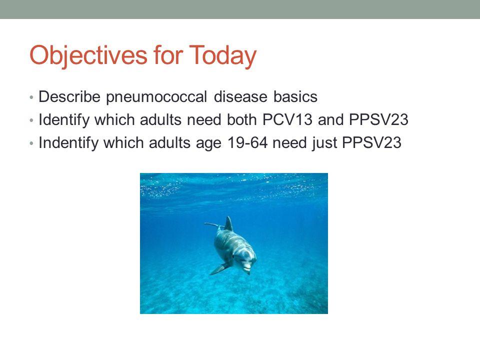 Objectives for Today Describe pneumococcal disease basics