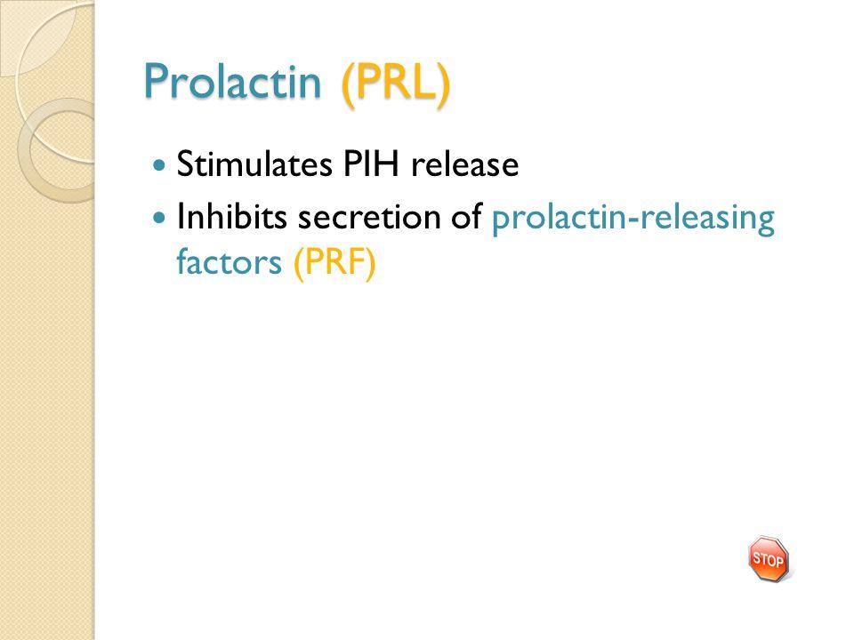 Prolactin (PRL) Stimulates PIH release