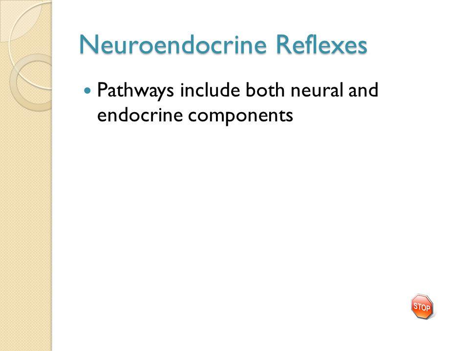 Neuroendocrine Reflexes
