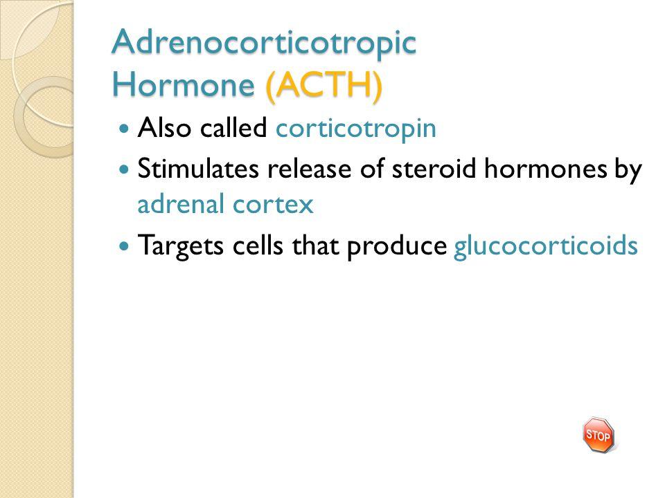 Adrenocorticotropic Hormone (ACTH)