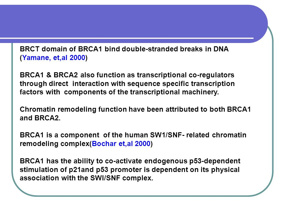 BRCT domain of BRCA1 bind double-stranded breaks in DNA (Yamane, et,al 2000)