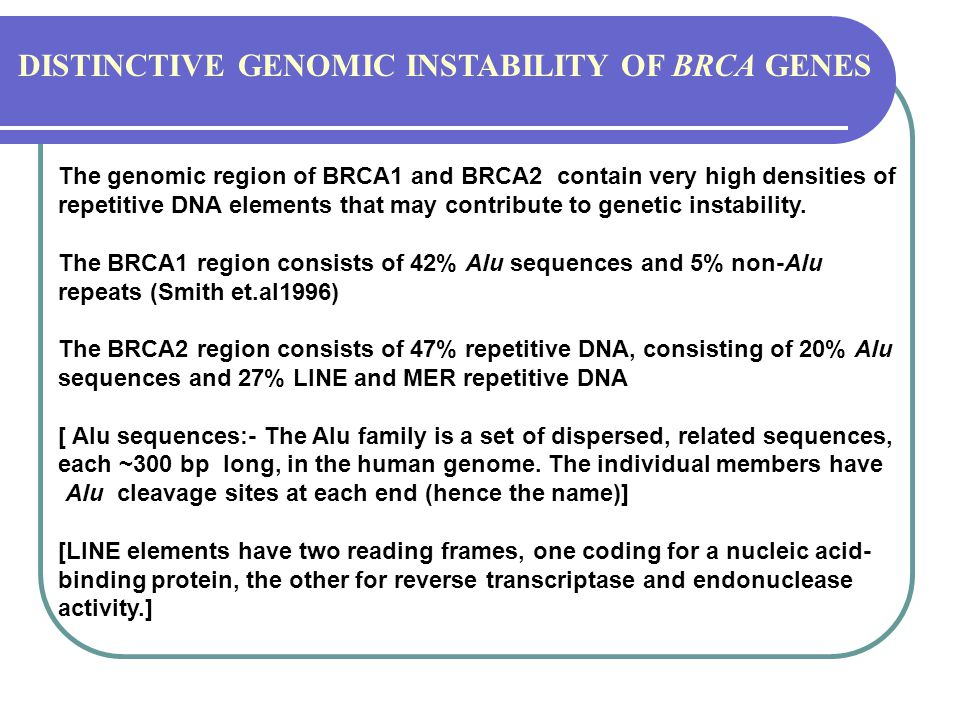 DISTINCTIVE GENOMIC INSTABILITY OF BRCA GENES
