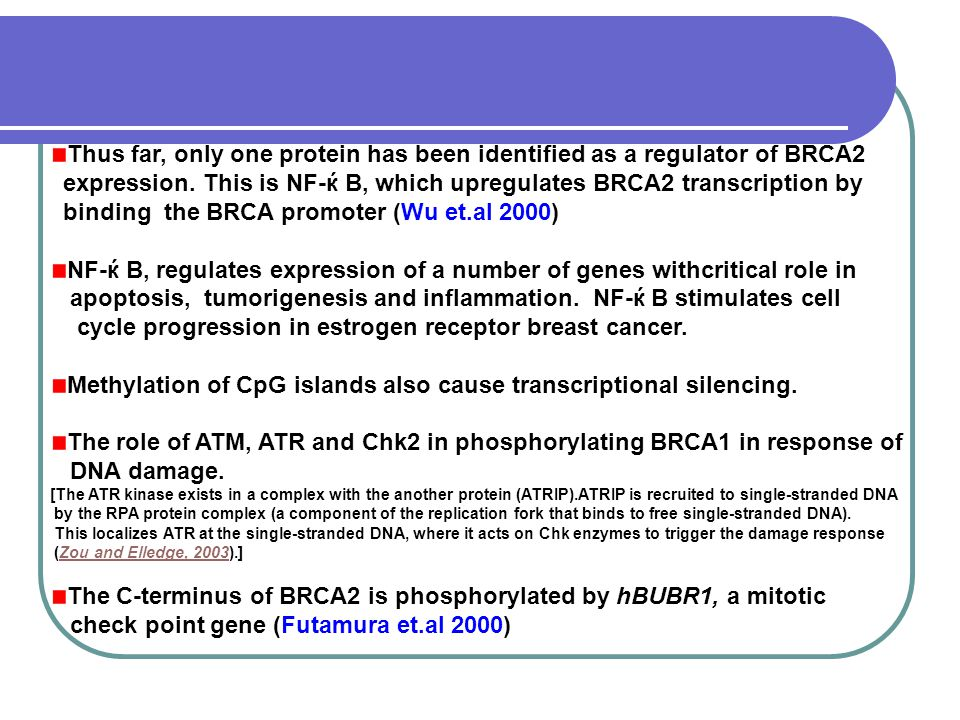 Thus far, only one protein has been identified as a regulator of BRCA2