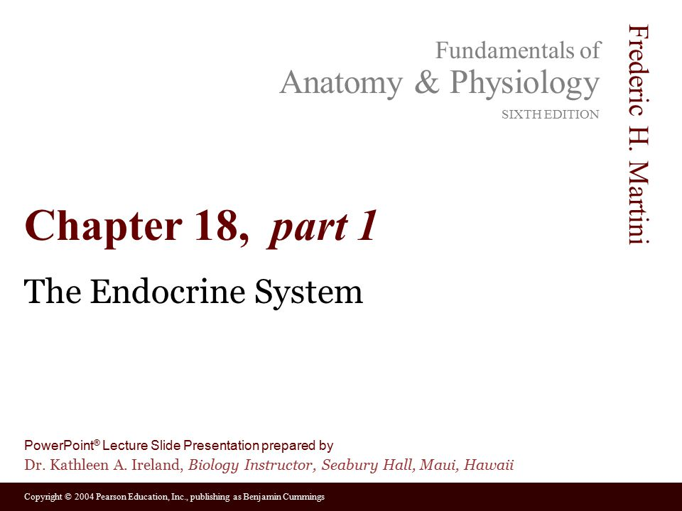 Chapter 18, part 1 The Endocrine System