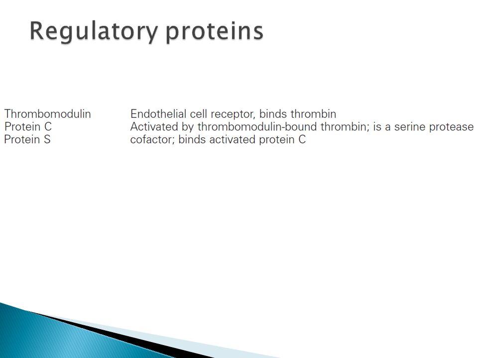 Regulatory proteins