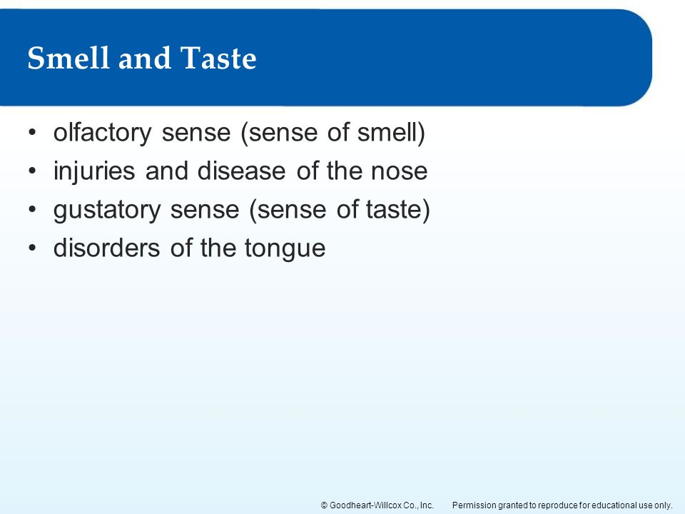Smell and Taste olfactory sense (sense of smell)