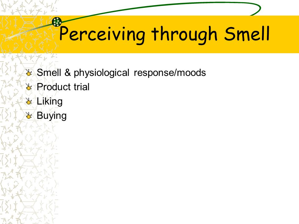 Perceiving through Smell