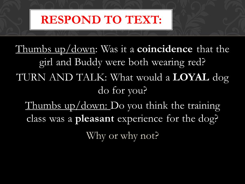 Respond to text: