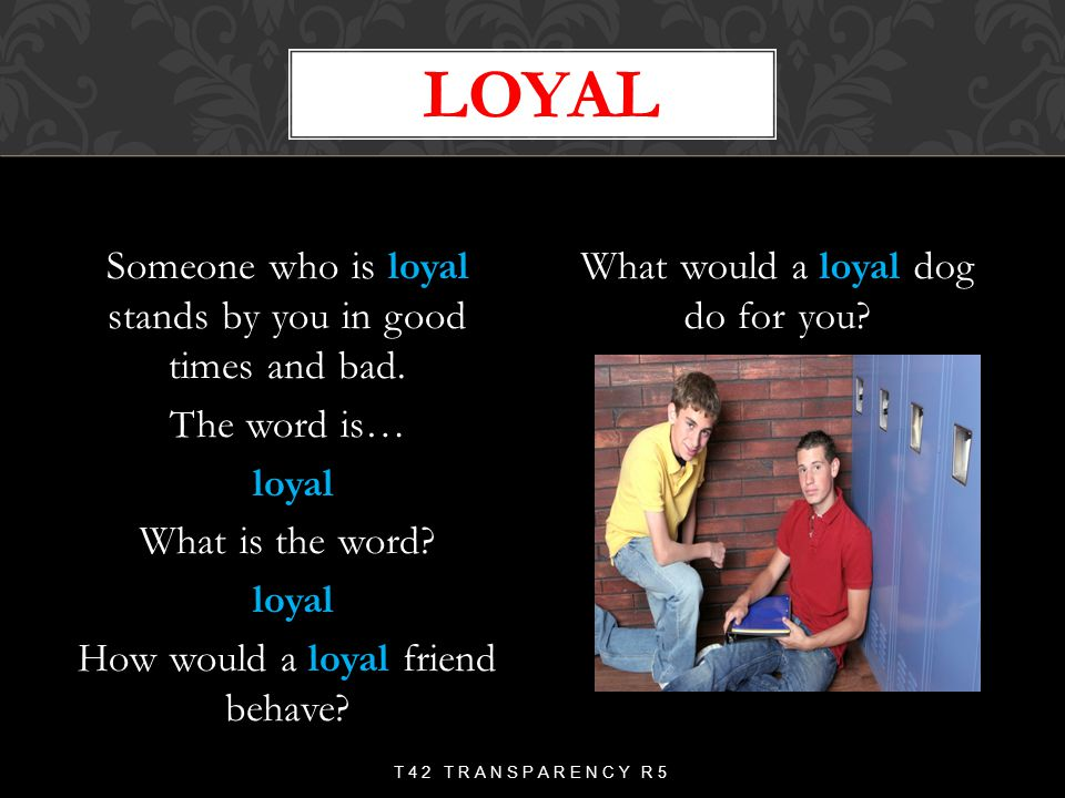 What would a loyal dog do for you