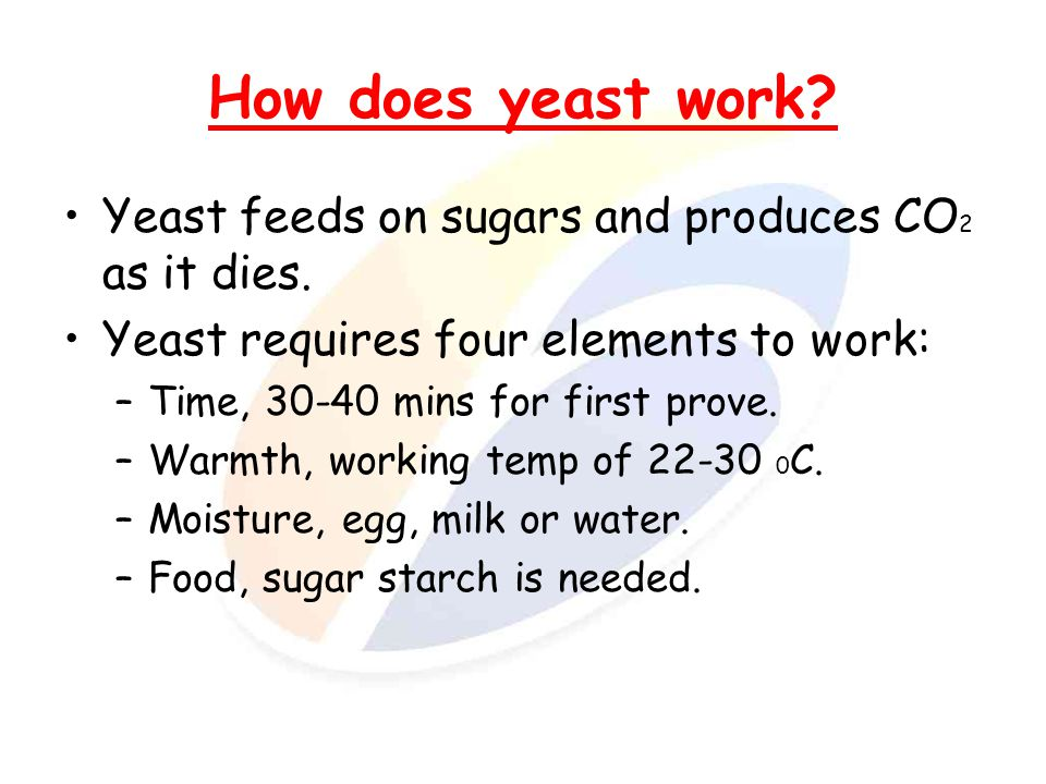 How does yeast work Yeast feeds on sugars and produces CO2 as it dies. Yeast requires four elements to work:
