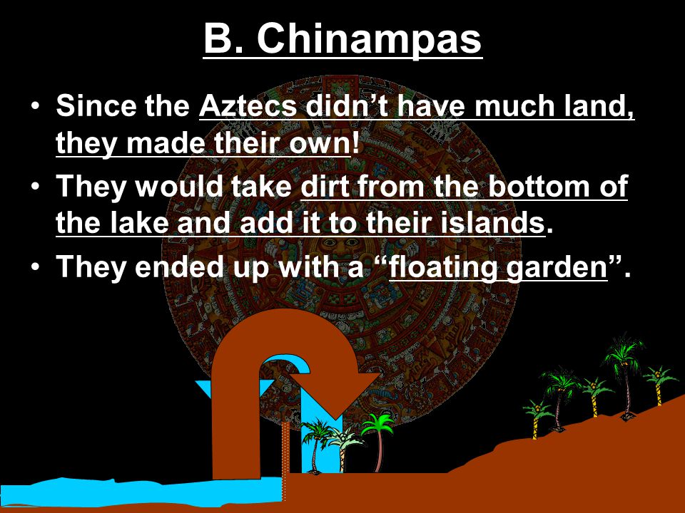 B. Chinampas Since the Aztecs didn't have much land, they made their own!