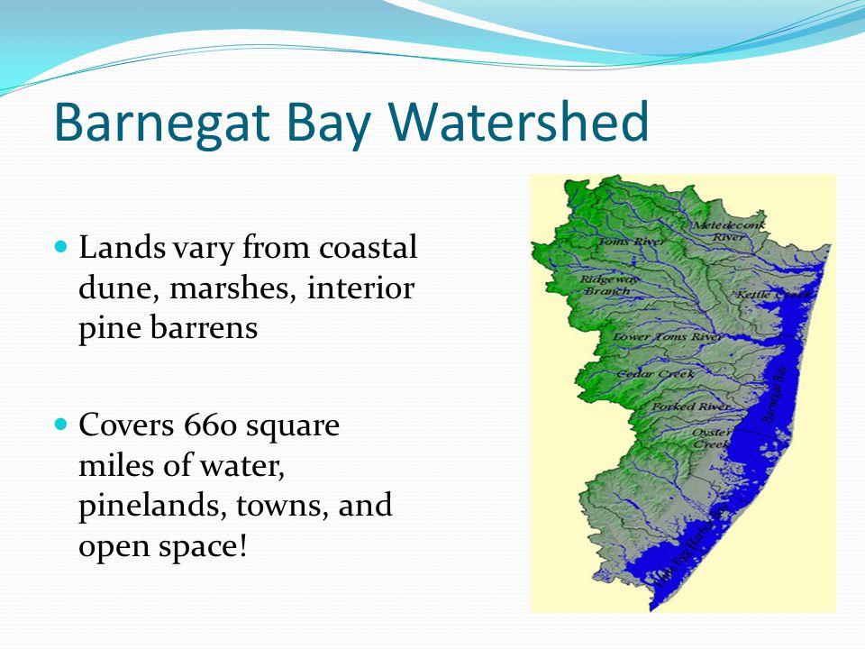 Barnegat Bay Watershed