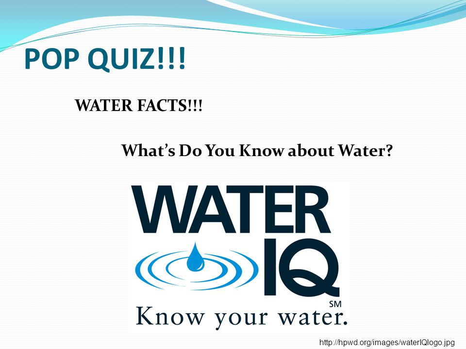 POP QUIZ!!! WATER FACTS!!! What's Do You Know about Water