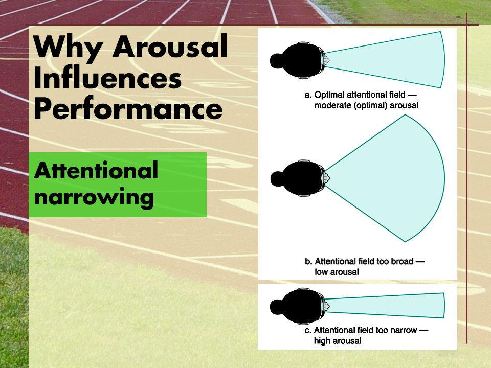 Why Arousal Influences Performance