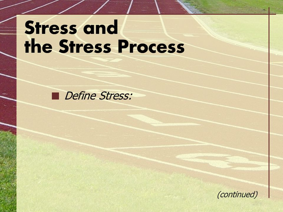 Stress and the Stress Process