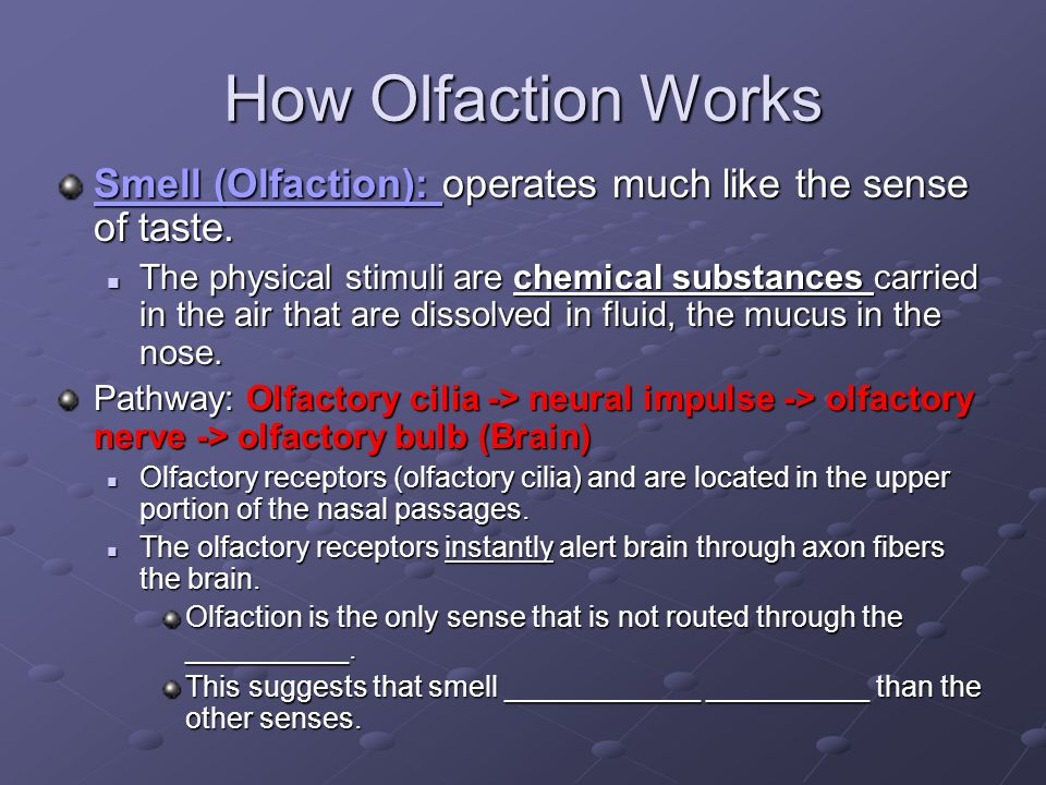 How Olfaction Works Smell (Olfaction): operates much like the sense of taste.