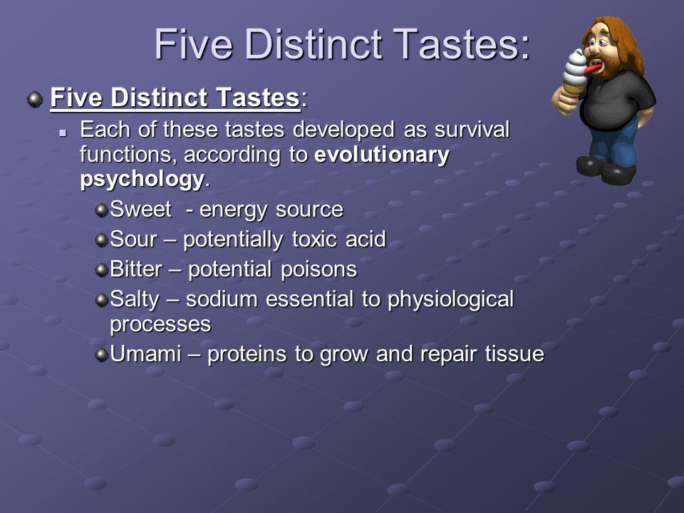 Five Distinct Tastes: Five Distinct Tastes: